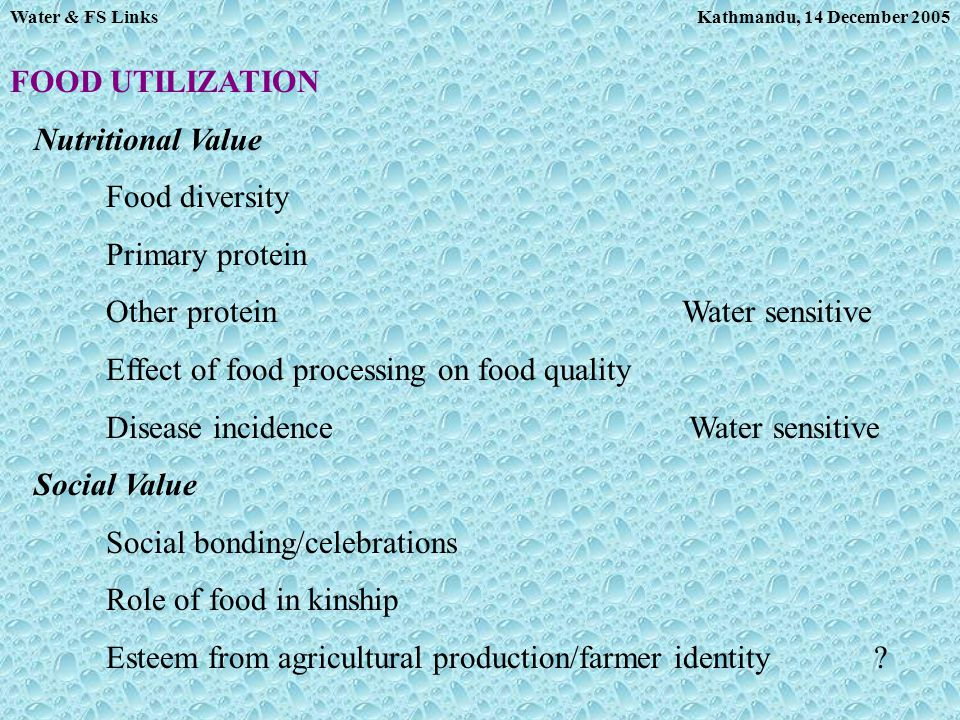 Kathmandu, 14 December 2005Water & FS Links FOOD UTILIZATION Nutritional Value Food diversity Primary protein Other proteinWater sensitive Effect of f