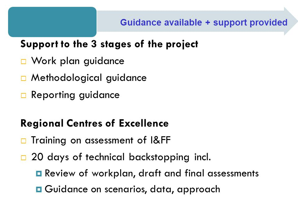 Support to the 3 stages of the project  Work plan guidance  Methodological guidance  Reporting guidance Regional Centres of Excellence  Training on assessment of I&FF  20 days of technical backstopping incl.