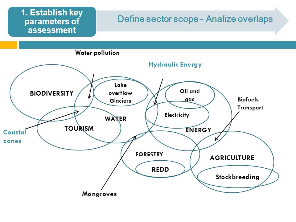 Define sector scope - Analize overlaps WATER BIODIVERSITY TOURISM FORESTRY ENERGY AGRICULTURE Lake overflow Glaciers Electricity Oil and gas REDD Stockbreeding Coastal zones Water pollution Mangroves Biofuels Transport Hydraulic Energy 1.