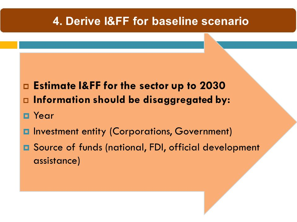  Estimate I&FF for the sector up to 2030  Information should be disaggregated by:  Year  Investment entity (Corporations, Government)  Source of