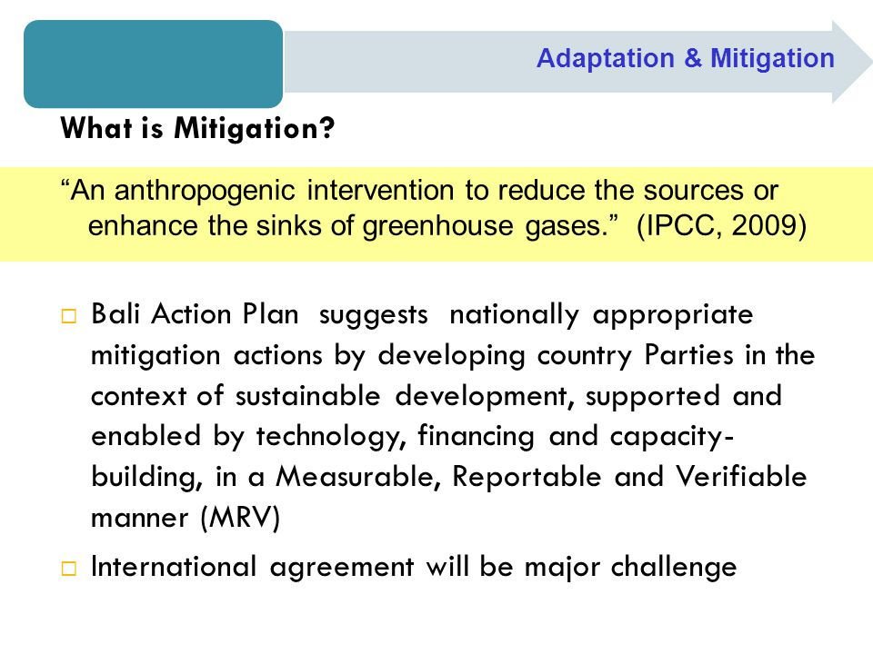 What is Mitigation.
