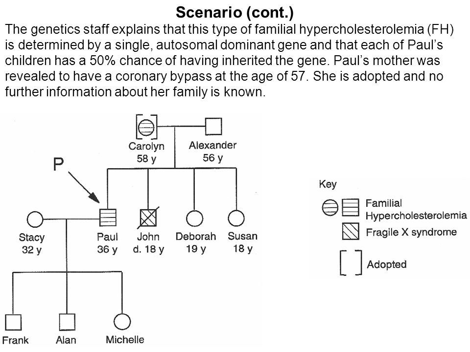 Scenario (cont.) The genetics staff explains that this type of familial hypercholesterolemia (FH) is determined by a single, autosomal dominant gene and that each of Paul's children has a 50% chance of having inherited the gene.