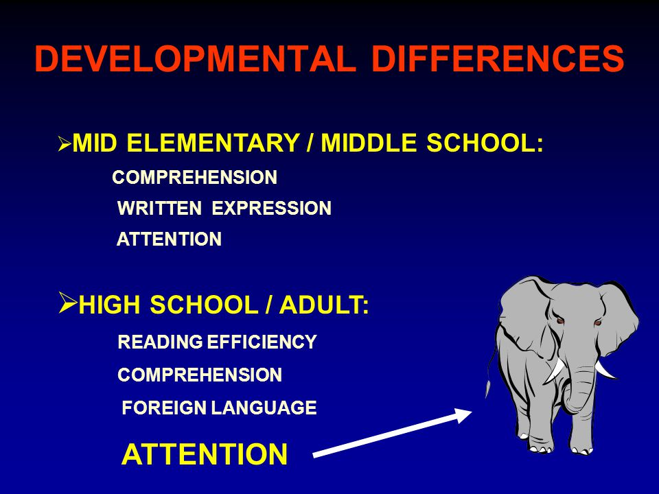 DEVELOPMENTAL DIFFERENCES  HIGH SCHOOL / ADULT: READING EFFICIENCY COMPREHENSION FOREIGN LANGUAGE ATTENTION  MID ELEMENTARY / MIDDLE SCHOOL: COMPREHENSION WRITTEN EXPRESSION ATTENTION
