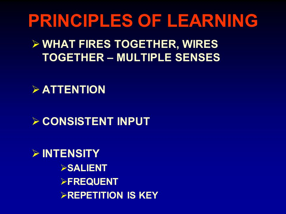 PRINCIPLES OF LEARNING  WHAT FIRES TOGETHER, WIRES TOGETHER – MULTIPLE SENSES  ATTENTION  CONSISTENT INPUT  INTENSITY  SALIENT  FREQUENT  REPETITION IS KEY