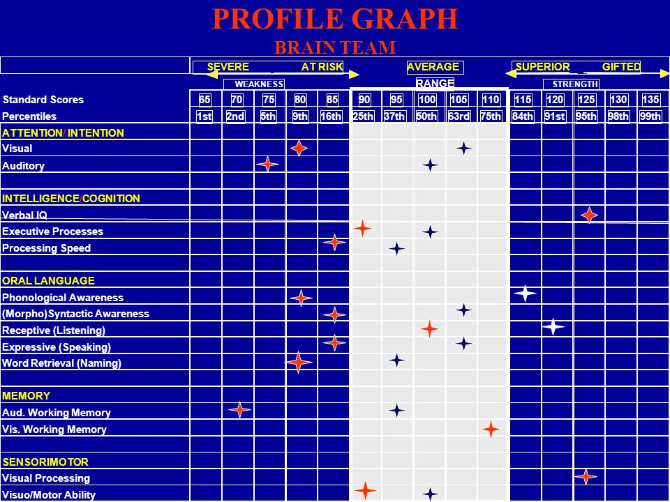 PROFILE GRAPH BRAIN TEAM