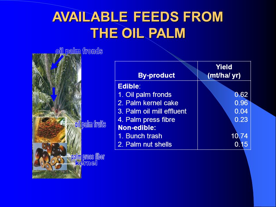 AVAILABLE FEEDS FROM THE OIL PALM By-product Yield (mt/ha/ yr) Edible: 1.