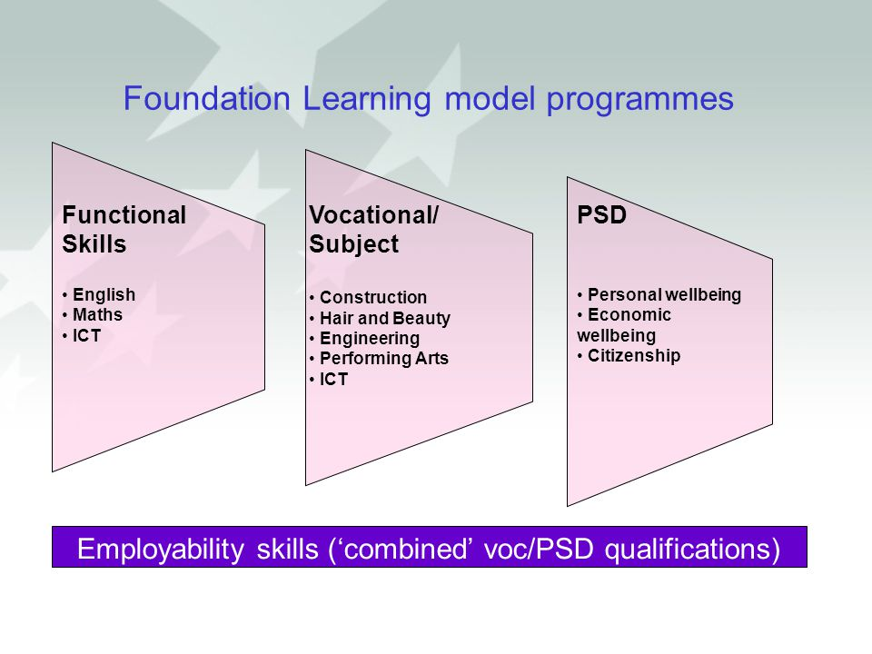 Foundation Learning model programmes Employability skills ('combined' voc/PSD qualifications) Functional Skills English Maths ICT Vocational/ Subject