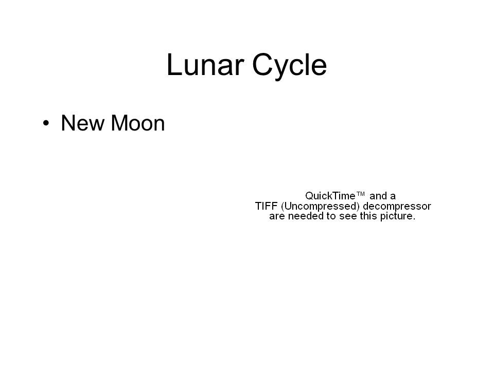 Lunar Cycle New Moon