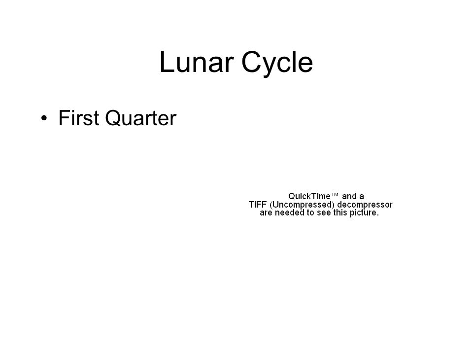 Lunar Cycle First Quarter
