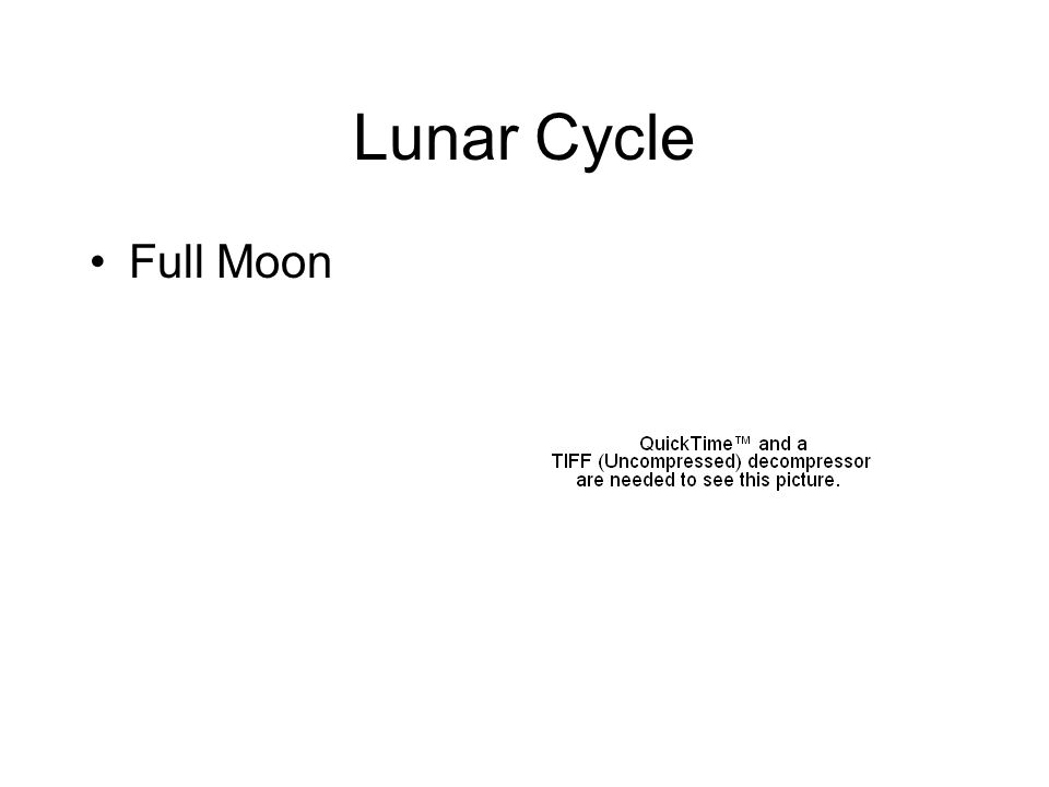 Lunar Cycle Full Moon