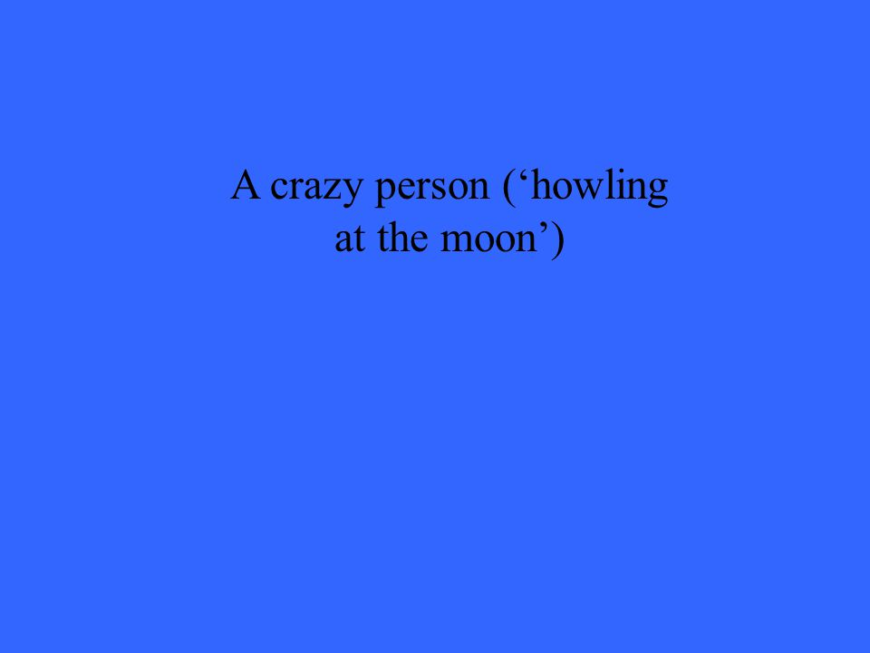 A crazy person ('howling at the moon')