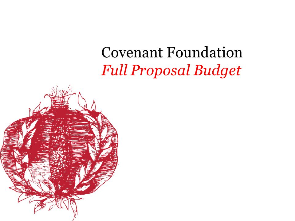 Using the Budget Template Revenue In-Kind Other Grants Program Fees Other (i.e., individual contributions) Expenses Personnel, Consultants, Supplies, Other Project Budget and Request to Foundation Simply enter numbers.