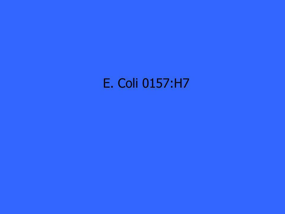 E. Coli 0157:H7