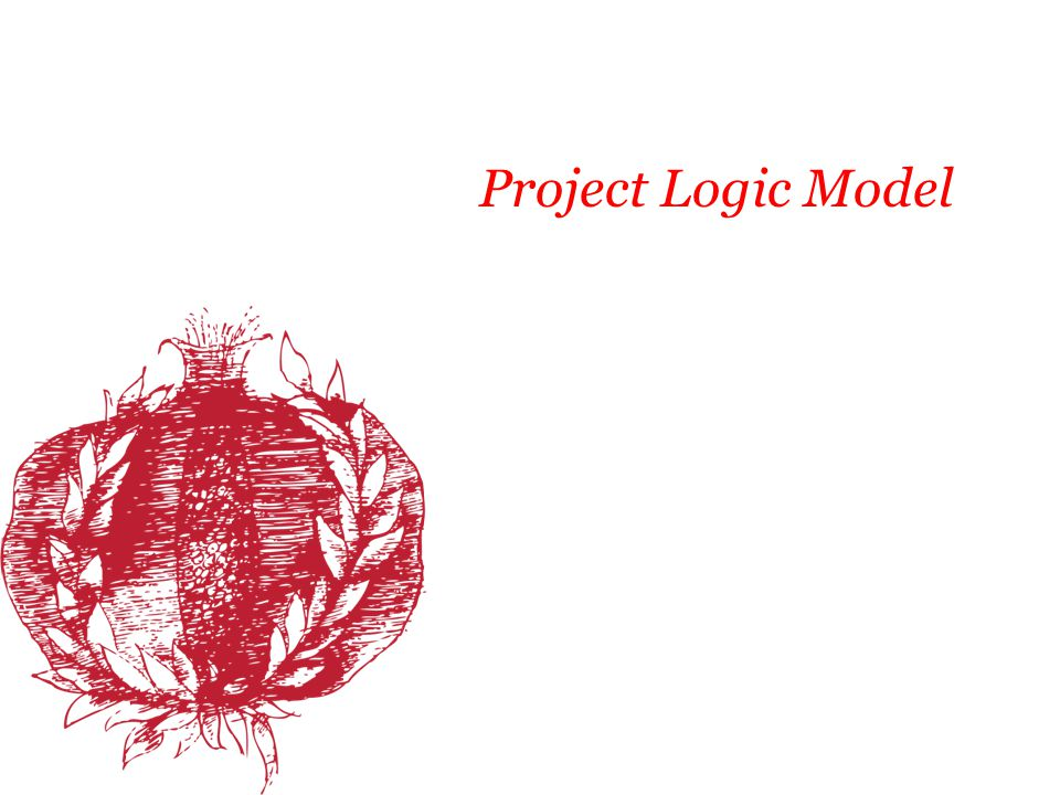 Project Logic Model