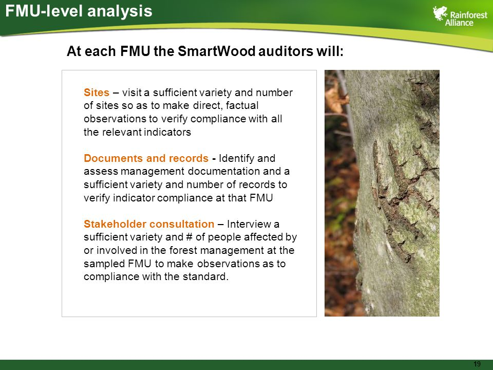 19 FMU-level analysis At each FMU the SmartWood auditors will: Sites – visit a sufficient variety and number of sites so as to make direct, factual ob