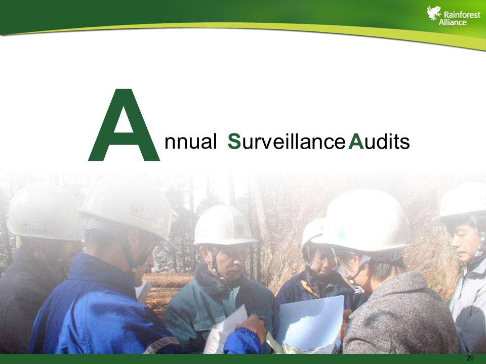20 A nnual SurveillanceAudits