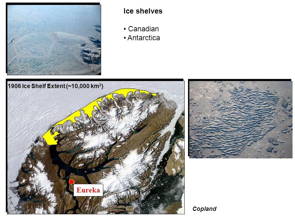 Ice shelves Canadian Antarctica 1906 Ice Shelf Extent (~10,000 km 2 ) 2008 Ice Shelf Extent (~1000 km 2 ) Eureka Copland