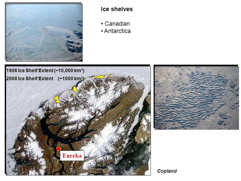 Noetzli 2008 Ellesmere Island, Canadian Arctic