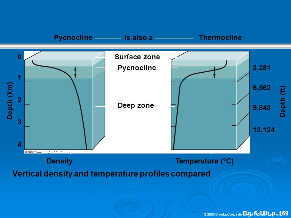 © 2006 Brooks/Cole, a division of Thomson Learning, Inc. Fig. 6-18b, p. 169 Pycnoclineis also aThermocline 0Surface zone Pycnocline 3,281 1 6,562 9,84