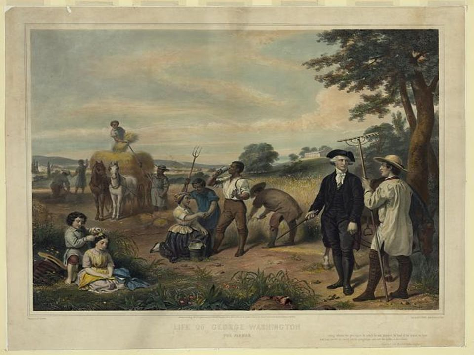 The skilled and manual labor needed to run Mount Vernon was largely provided by slaves