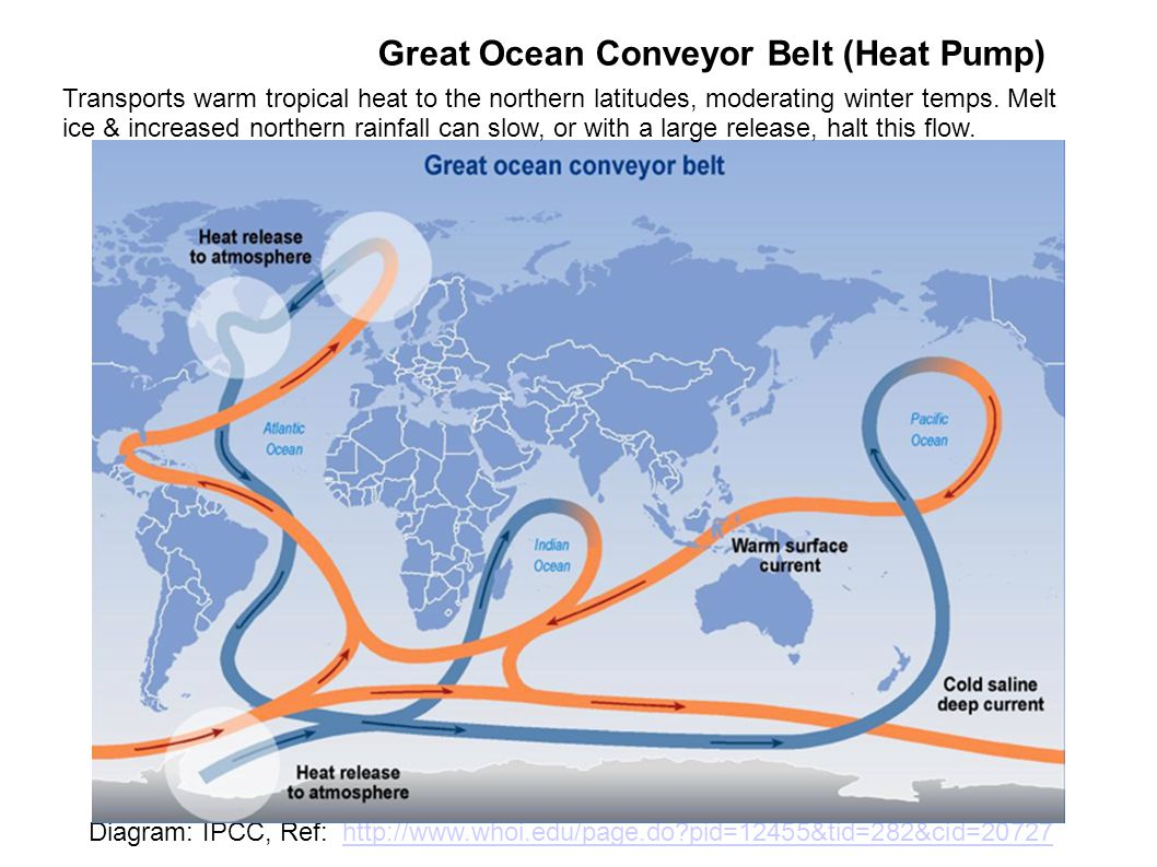 Great Ocean Conveyor Belt (Heat Pump) Diagram: IPCC, Ref: http://www.whoi.edu/page.do pid=12455&tid=282&cid=20727http://www.whoi.edu/page.do pid=12455&tid=282&cid=20727 Transports warm tropical heat to the northern latitudes, moderating winter temps.