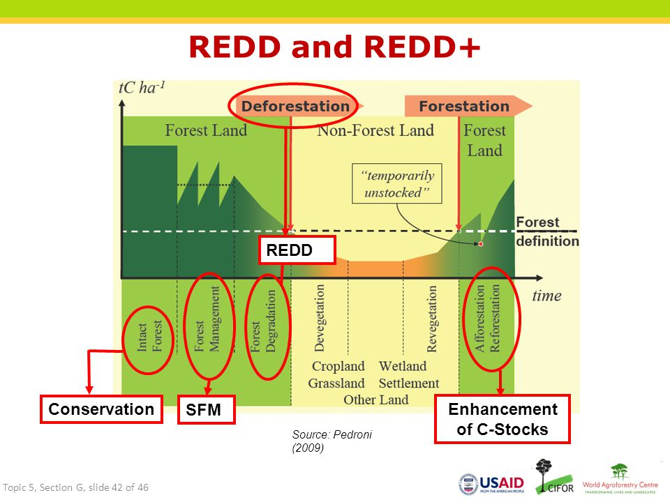 REDD and REDD+ SFM REDD Conservation Enhancement of C-Stocks Source: Pedroni (2009) Topic 5, Section G, slide 42 of 46