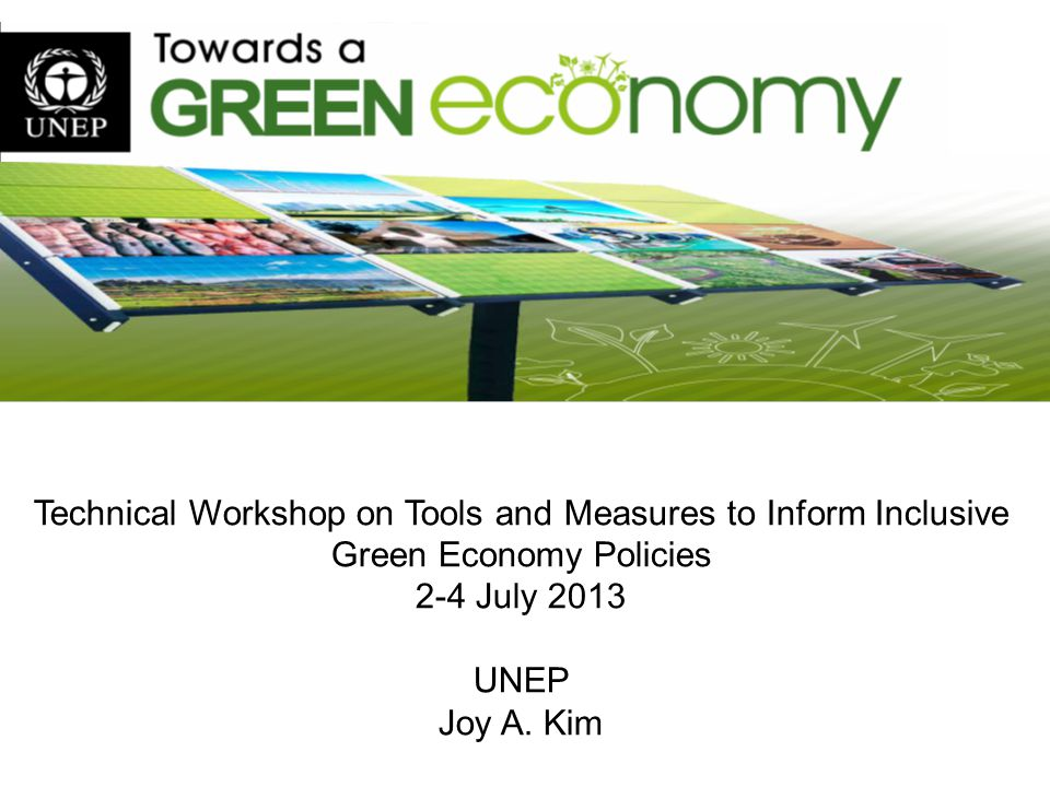 Technical Workshop on Tools and Measures to Inform Inclusive Green Economy Policies 2-4 July 2013 UNEP Joy A. Kim