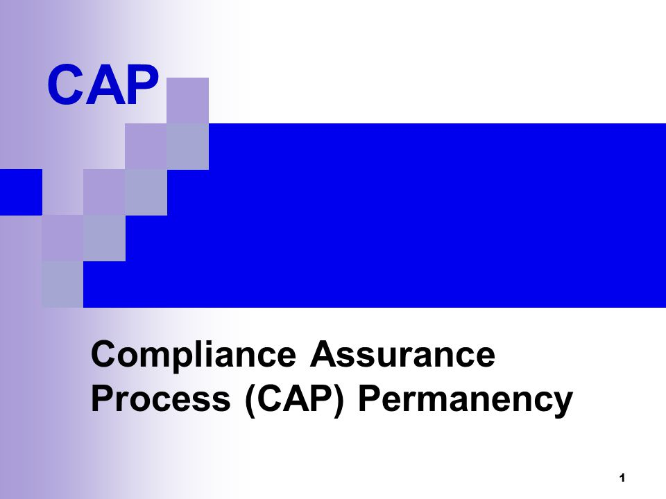 22 Compliance Maintenance Phase: Description (2) Allows ACs to manage more than one CAP case TP can move between CAP and Compliance Maintenance depending on the number and complexity of transactions