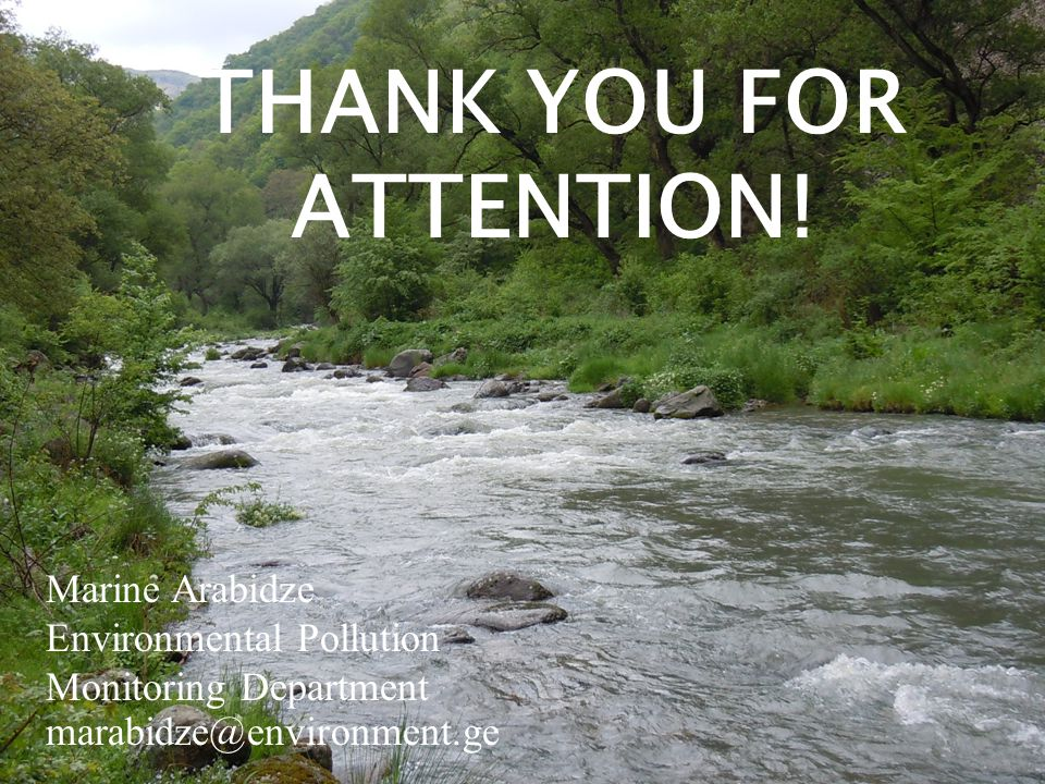 Marine Arabidze Environmental Pollution Monitoring Department marabidze@environment.ge THANK YOU FOR ATTENTION!
