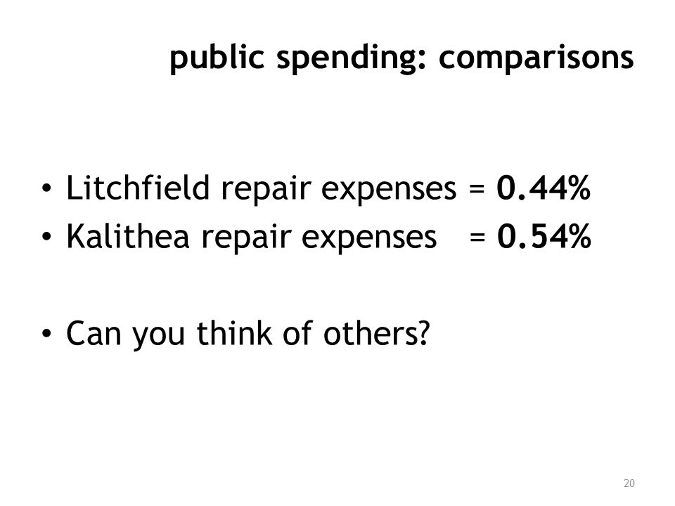 public spending: comparisons Litchfield repair expenses = 0.44% Kalithea repair expenses = 0.54% Can you think of others? 20