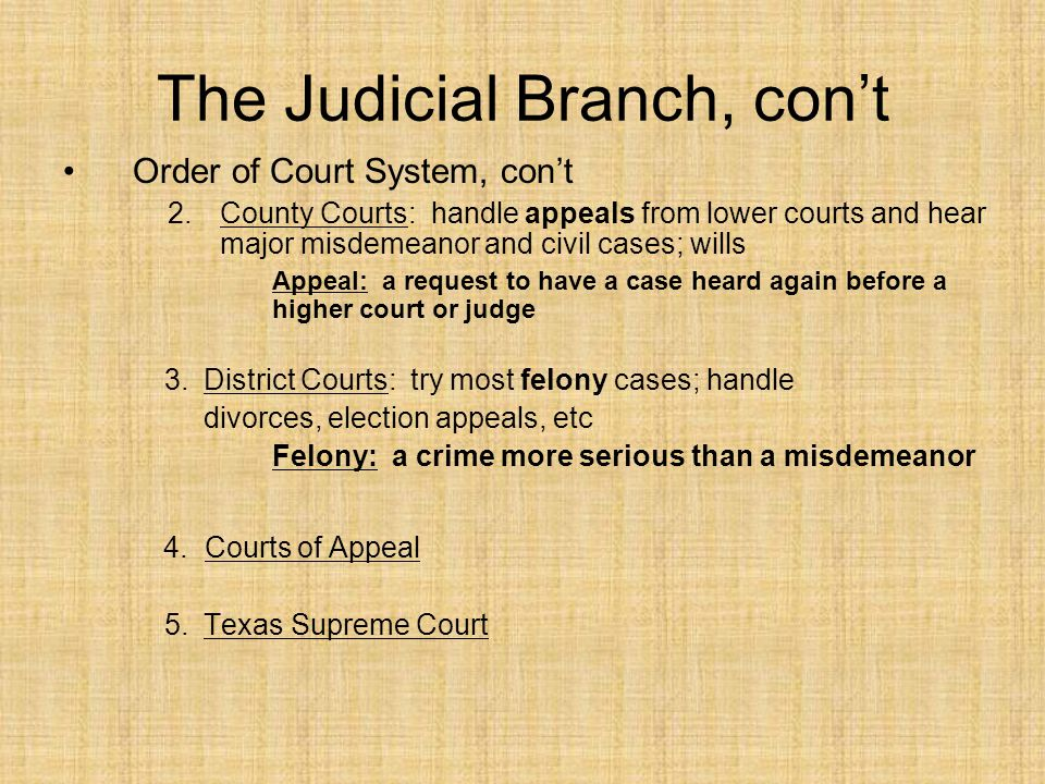 The Judicial Branch, con't Order of Court System, con't 2.County Courts: handle appeals from lower courts and hear major misdemeanor and civil cases; wills Appeal: a request to have a case heard again before a higher court or judge 3.