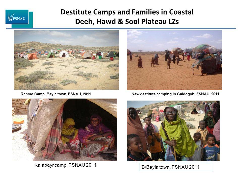Destitute Camps and Families in Coastal Deeh, Hawd & Sool Plateau LZs Rahmo Camp, Beyla town, FSNAU, 2011 Kalabayr camp, FSNAU 2011 B/Beyla town, FSNAU 2011 New destitute camping in Galdogob, FSNAU, 2011