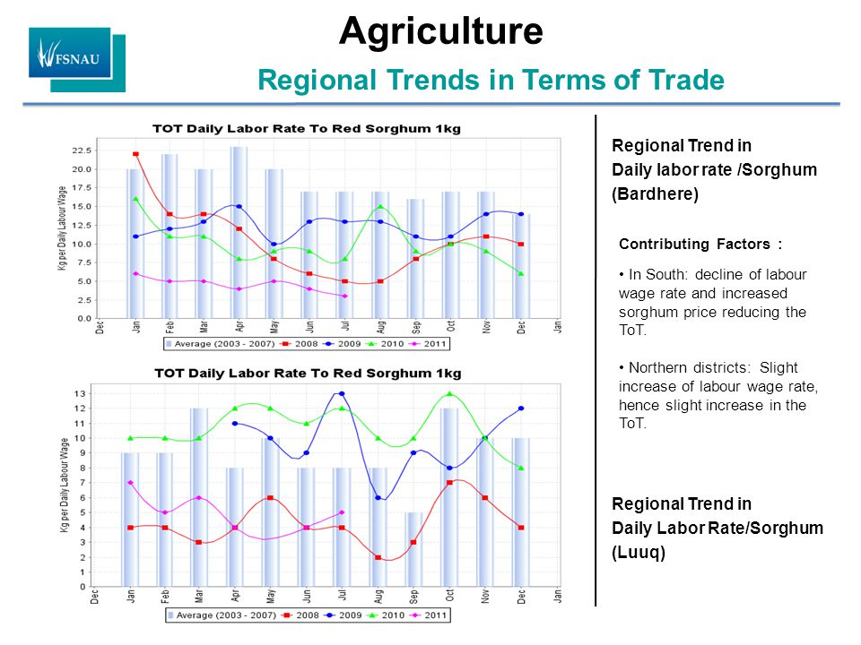 Agriculture Regional Trends in Terms of Trade Regional Trend in Daily labor rate /Sorghum (Bardhere) Regional Trend in Daily Labor Rate/Sorghum (Luuq) Contributing Factors : In South: decline of labour wage rate and increased sorghum price reducing the ToT.