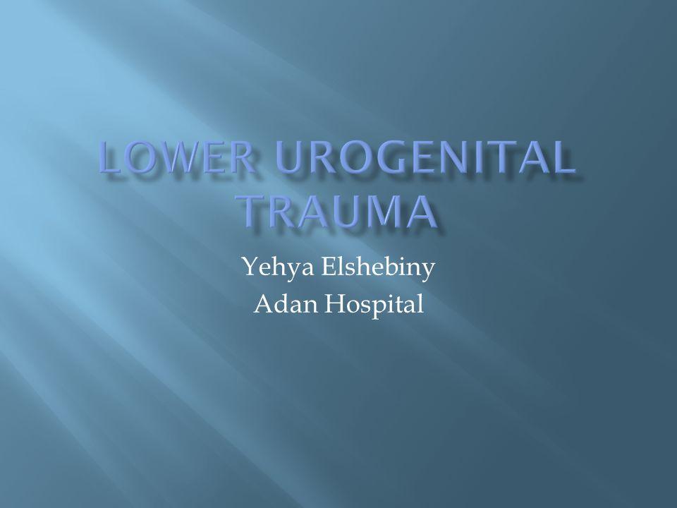 Yehya Elshebiny Adan Hospital