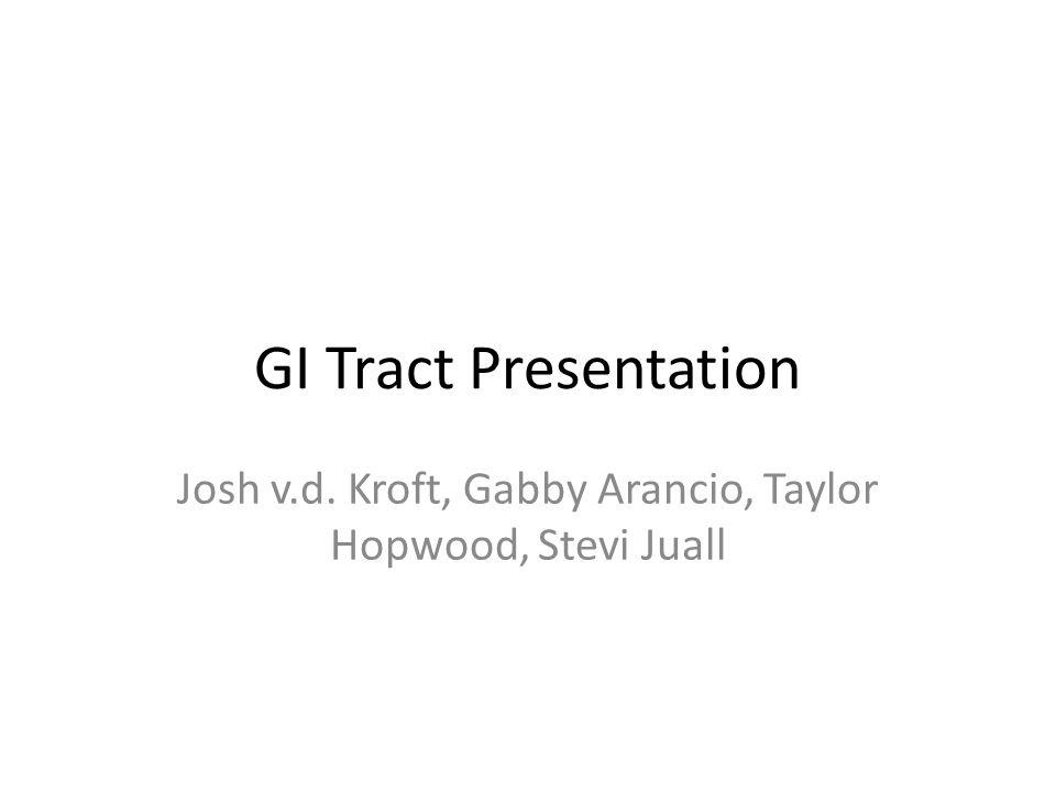 GI Tract Presentation Josh v.d. Kroft, Gabby Arancio, Taylor Hopwood, Stevi Juall