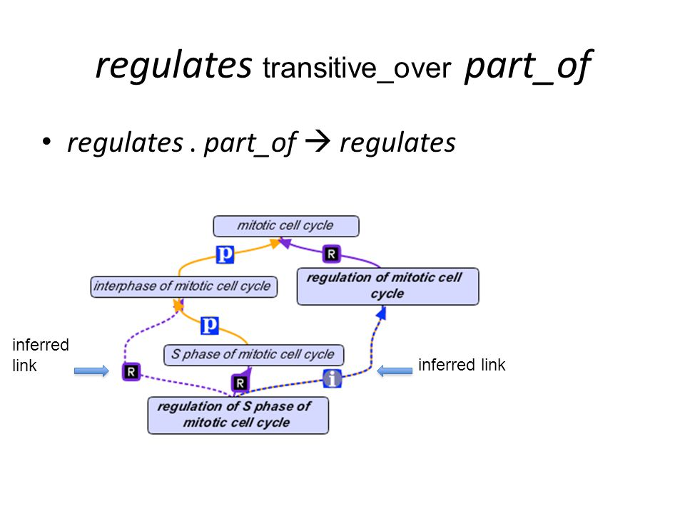 regulates transitive_over part_of regulates. part_of  regulates inferred link inferred link