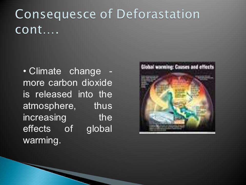 Climate change - more carbon dioxide is released into the atmosphere, thus increasing the effects of global warming.
