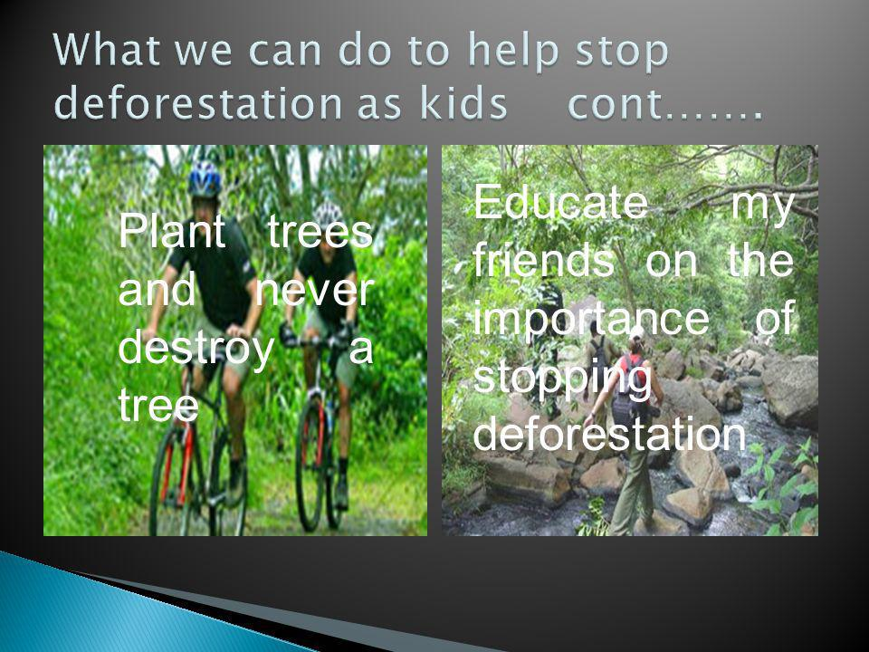 Plant trees and never destroy a tree Educate my friends on the importance of stopping deforestation