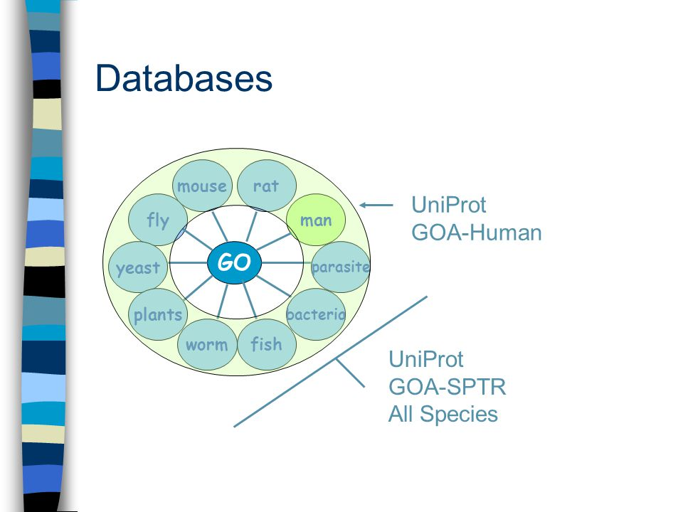 Databases UniProt GOA-Human GO fly yeast worm man mouserat plants parasite bacteria fish UniProt GOA-SPTR All Species