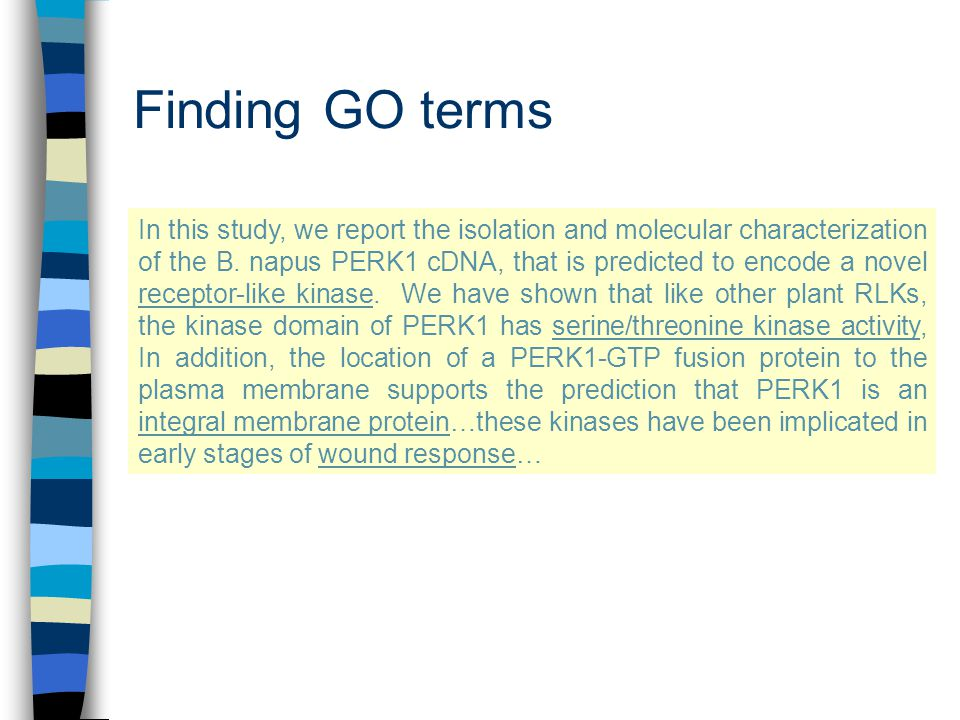 Finding GO terms In this study, we report the isolation and molecular characterization of the B.