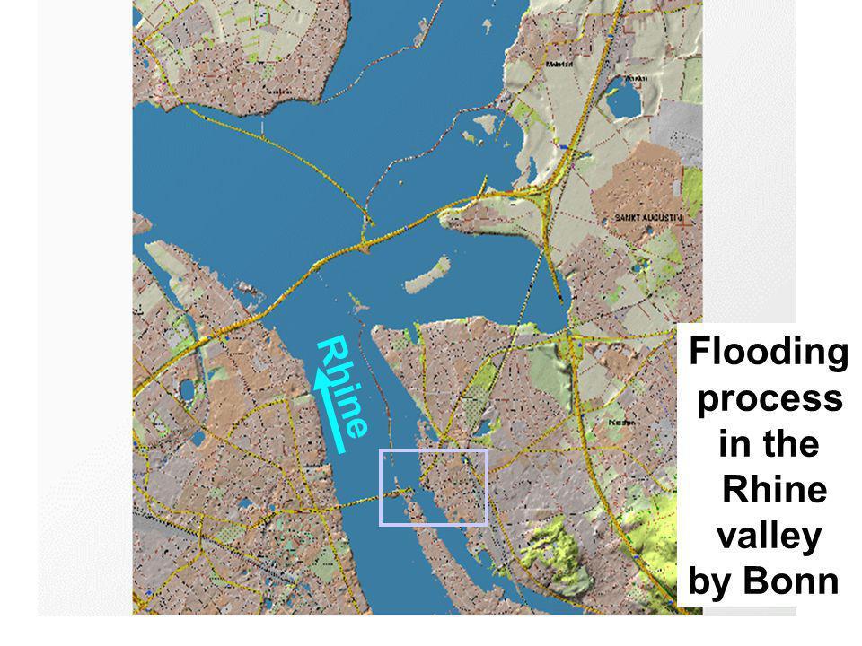 Flooding process in the Rhine valley by Bonn Rhine