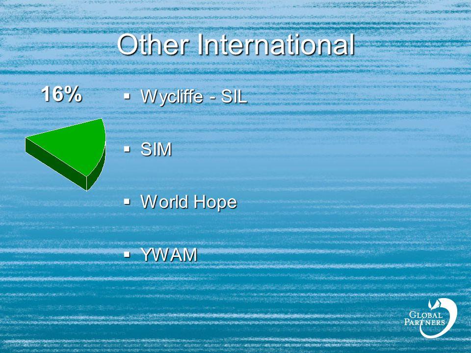 Other International  Wycliffe - SIL  SIM  World Hope  YWAM 16%