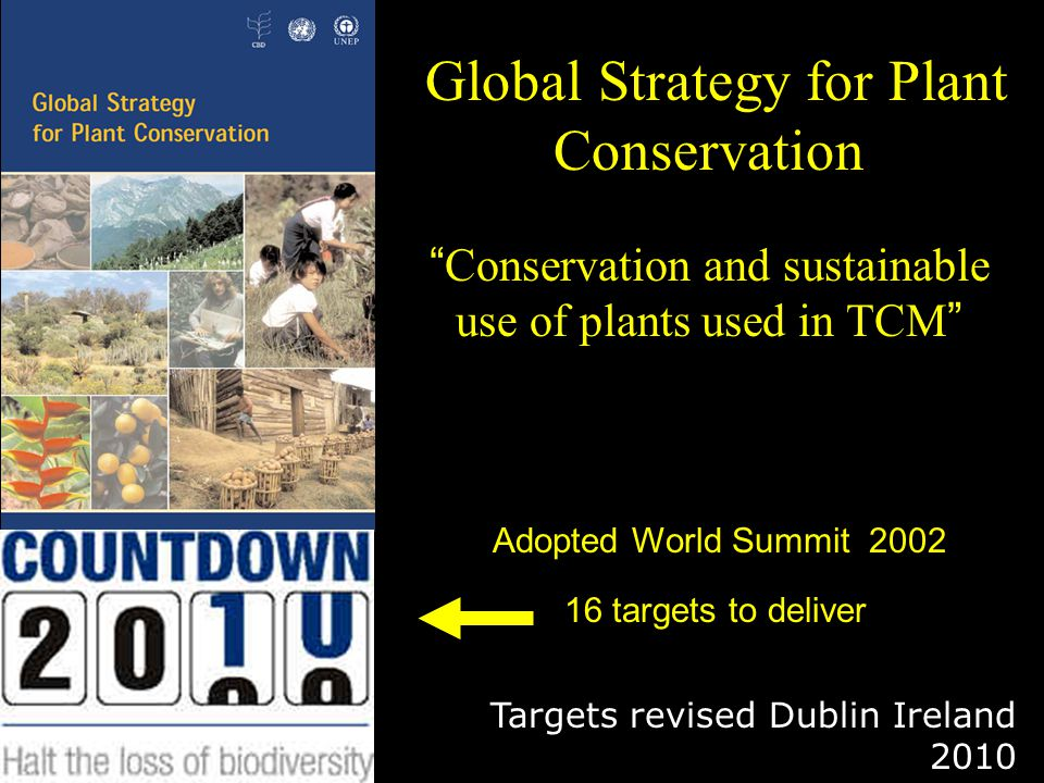 Global Strategy for Plant Conservation Conservation and sustainable use of plants used in TCM Adopted World Summit 2002 16 targets to deliver Targets revised Dublin Ireland 2010