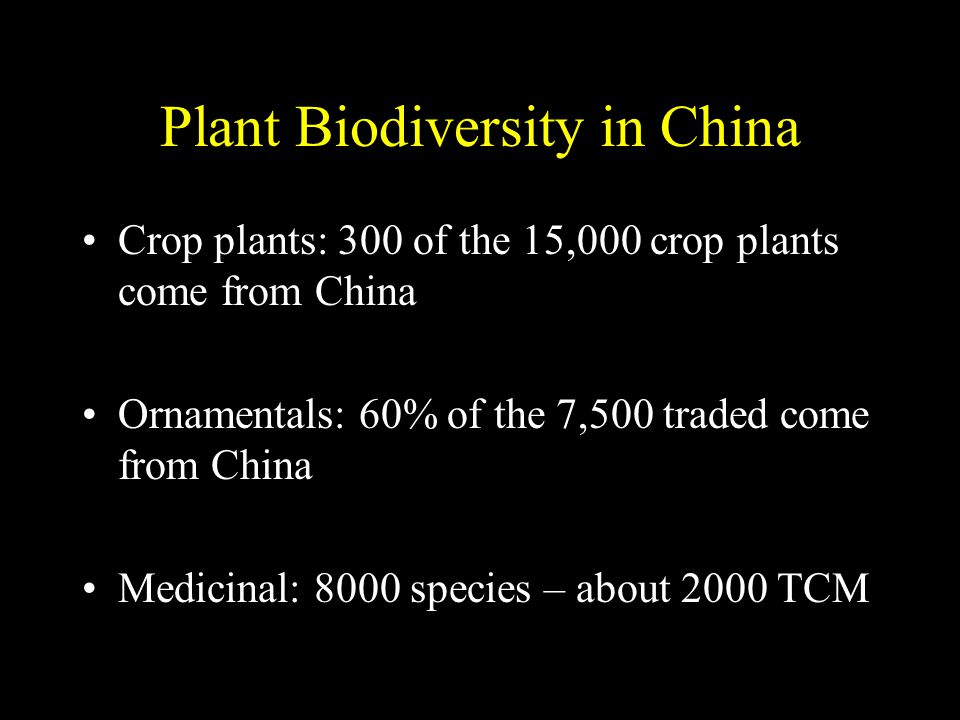 Plant Biodiversity in China Crop plants: 300 of the 15,000 crop plants come from China Ornamentals: 60% of the 7,500 traded come from China Medicinal: 8000 species – about 2000 TCM