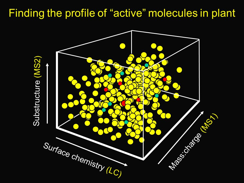 Finding the profile of active molecules in plant