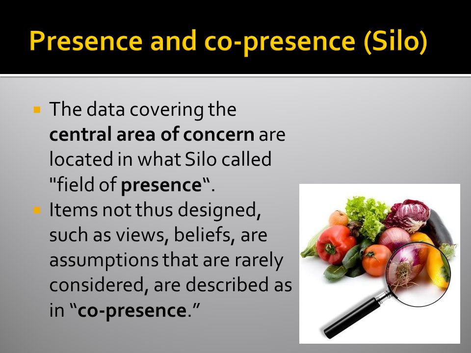  The data covering the central area of concern are located in what Silo called