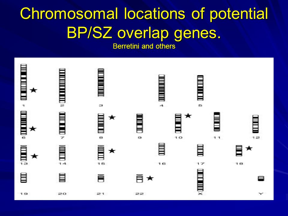 Chromosomal locations of potential BP/SZ overlap genes. Berretini and others