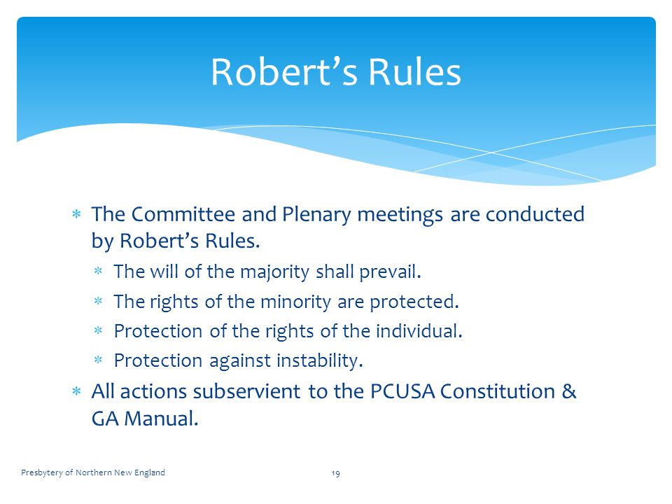  The Committee and Plenary meetings are conducted by Robert's Rules.