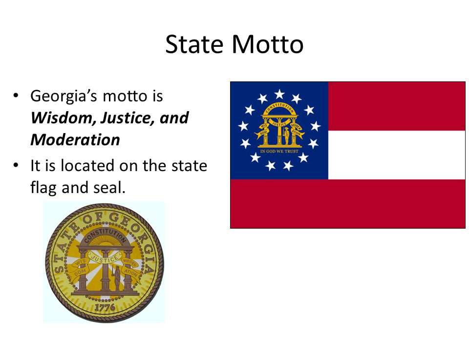 Georgia State Government: Executive Branch, Legislative Branch, & Judicial Branch Georgia Performance Standards: SS8CG3: The student will analyze the role of the executive branch in Georgia state government.