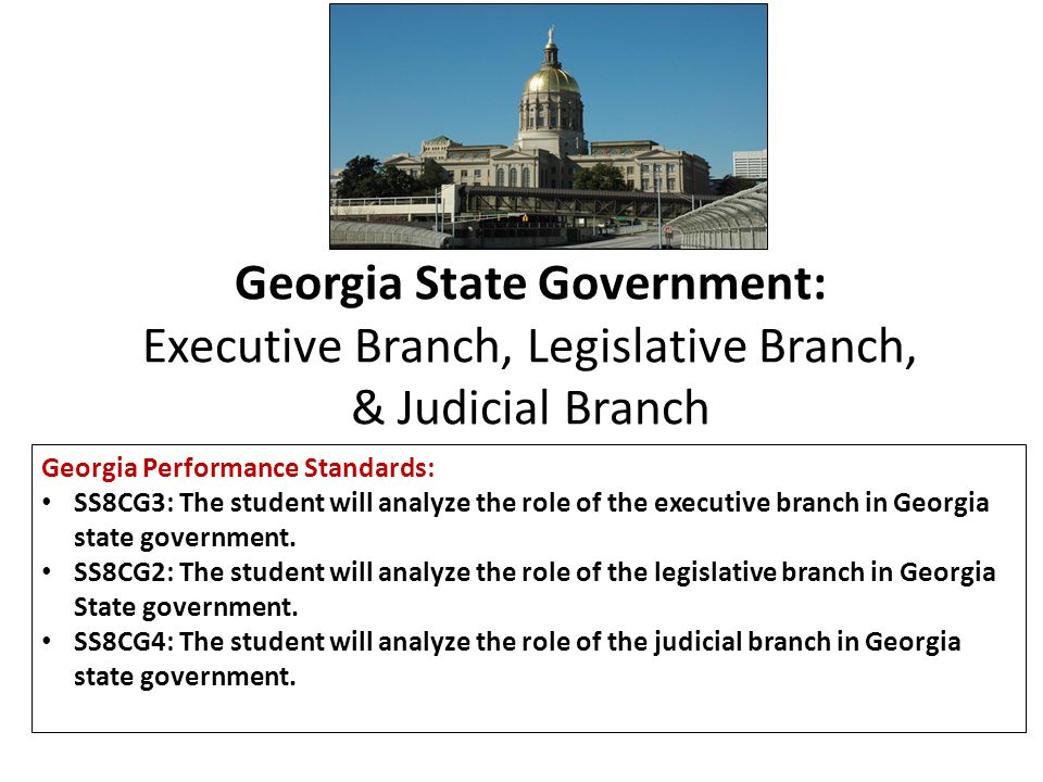 Fourth Branch This additional branch focuses on Georgia's citizens and their roles.